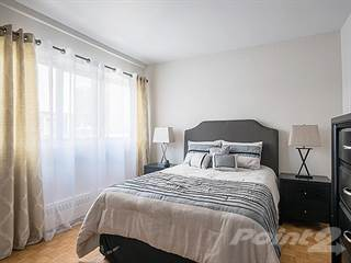 1 Bedroom Apartments For Rent In New Edinburgh Point2 Homes