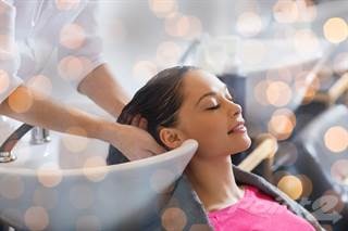 Comm/Ind for sale in Sleek Modern Hair Salon For Sale!, Tampa, FL, 33606