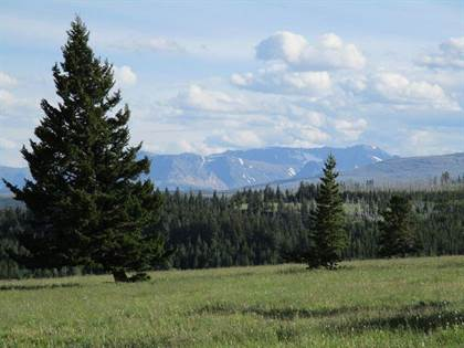 Lots And Land for sale in Nhn Livermore Road, Babb, MT, 59411