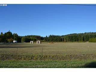 Land for sale in 21525 S MCKENZIE LN, Redland, OR, 97023