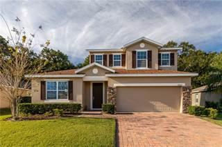 Single Family for sale in 34315 ALAMEDA DRIVE, Sorrento, FL, 32776