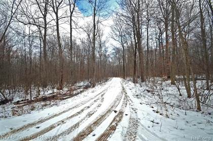 Lots And Land for sale in Lots 2&4 Deadwood Lane, Brighton, MI, 48114