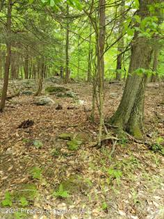 Lots And Land for sale in 26 Fernwood Dr, Newfoundland, PA, 18445