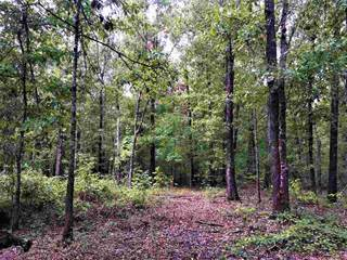Lots And Land for sale in Tbd Country Road 1769, Linden, TX, 75563