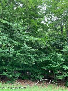 Lots And Land for sale in Lot J-228 BRANDYWINE TER, Tobyhanna, PA, 18466