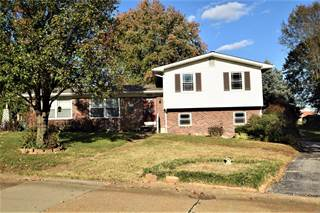 Single Family for sale in 1117 Alexander Drive, Festus, MO, 63028