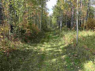 Land for sale in 53420 RGE RD 60, Rural Parkland County, Alberta