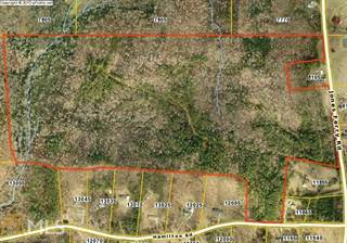 Farm And Agriculture for sale in 0 Jones Ferry Rd, Chattahoochee Hills, GA, 30268