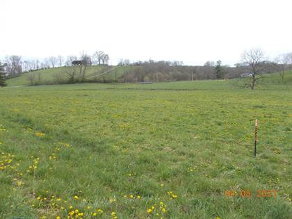 Farm And Agriculture for sale in 9999-Lot-2 Prewitt Grassy Lick Road, Mount Sterling, KY, 40353