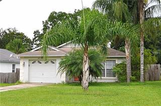 Single Family for sale in 206 2ND AVENUE SE, Lutz, FL, 33549