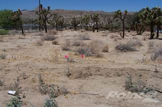 Apartment for sale in Diadem Dr. 0601-542-18, Yucca Valley, CA, 92284