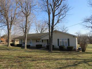 Single Family for sale in 812 N 3rd St, Piedmont, MO, 63957