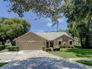 Single Family for sale in 3178 MONTROSE COURT, Palm Harbor, FL, 34684
