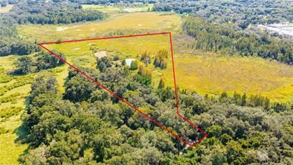 Propiedad residencial en venta en 13151 14TH, Dade City, FL, 33525