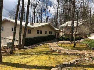 Single Family for sale in 187 LUCERNE STRASSE RD, Little Switzerland, NC, 28749