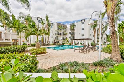 Apartment for rent in 9856 SW 88th Street, Miami, FL, 33176