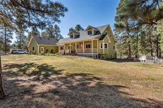 Single Family for sale in 5250 Timber Ridge Dr., Elizabeth, CO, 80107