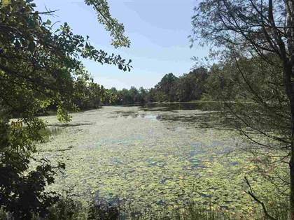 Lots And Land for sale in 0 CR 119, Houston, MS, 38851