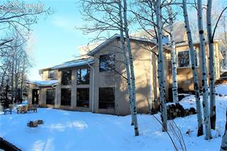 Comm/Ind for sale in 5701 Trout Creek Road, Woodland Park, CO, 80863