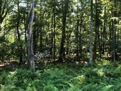 Lots And Land for sale in 191 Red Rock Cir, Hawley, PA, 18428