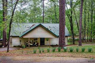 Single Family for sale in 451 Autumn Wood Trail, Holly Lake Ranch, TX, 75765