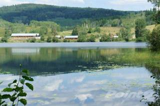 Farm And Agriculture for sale in 160 Acres with 1400 Meters of Lakefront on McCauley Lake, Horsefly, British Columbia