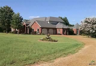 Single Family for sale in 2413 FM 1404, Big Sandy, TX, 75755
