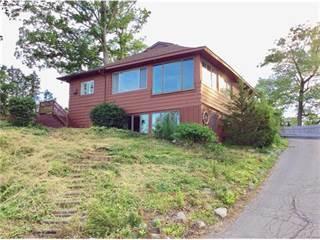 Single Family for sale in 246 Bellevue Avenue, Lake Orion, MI, 48362
