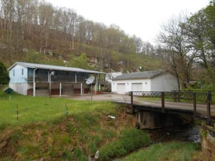 Farm And Agriculture for sale in 185 Right Trace Fork Rd, Tanner, WV, 26137