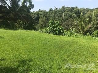 Land for sale in BO GUAJATACA - TERRENO, Guajataca, PR, 00678