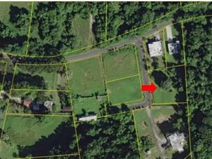 Residential Property for sale in 2 CARRETERA 665, Tierras Nuevas Saliente, PR, 00674