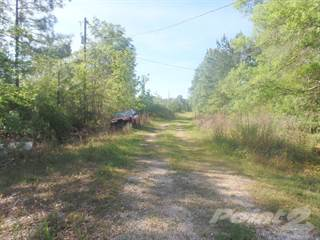 Farm And Agriculture for sale in 749 County Road 784, Buna, TX, 77612