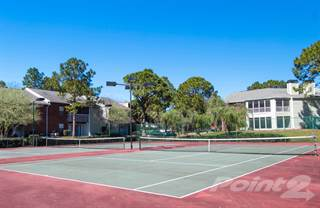 Apartment for rent in The Park at Elland - Destiny, Clearwater, FL, 33765
