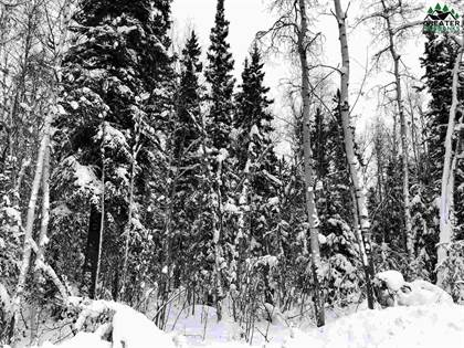 Lots And Land for sale in NHN HOPPER CREEK DRIVE, Fairbanks, AK, 99712