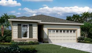 Single Family for sale in 2056 Amberly Drive, Middleburg, FL, 32068