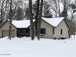 Single Family for sale in 9717 Sunset Drive, Canadian Lakes, MI, 49346