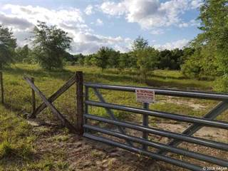 Farm And Agriculture for sale in 760 NW 96th Place, Branford, FL, 32008