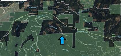 Lots And Land for sale in 0 10N59 Snow Mill RD, Pollock Pines, CA, 95726