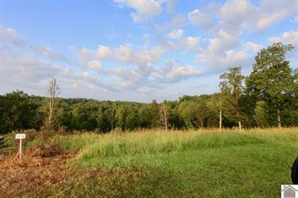 Lots And Land for sale in Lot 13 Rose Lane, Eddyville, KY, 42038