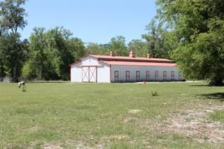 Land for sale in 499 River Plantation Road, Crawfordville, FL, 32327