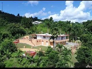Single Family for sale in km 8.1 QUEBRADA HONDA, CARR. 181, San Lorenzo, PR, 00754