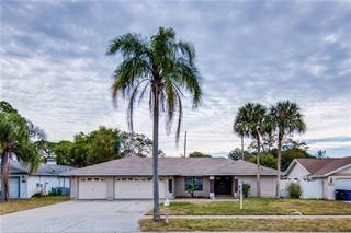 Single Family for sale in 2441 OLD COACH TRAIL, Clearwater, FL, 33765