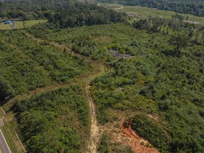Lots And Land for sale in HWY 35 HWY, Mize, MS, 39116