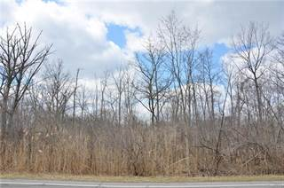 Land for sale in Vacant Meridian (Parcel 1), Grosse Ile, MI, 48138