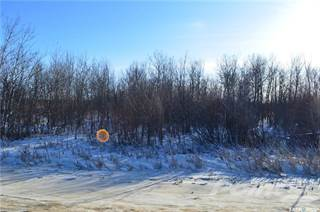 Farm And Agriculture for sale in Schensney Radisson Pasture Land, RM of Great Bend No 405, Saskatchewan
