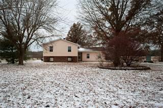Single Family for sale in 9351 Paul Meyer Road, Worden, IL, 62097