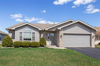 Single Family for sale in 381 Saddle Run Lane, Beecher, IL, 60401