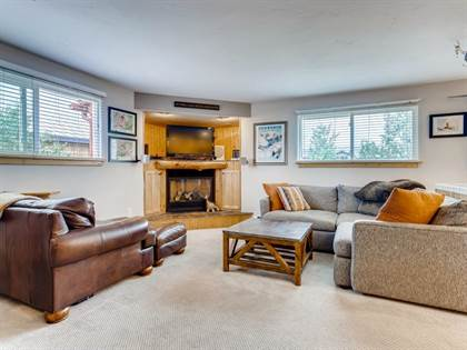 Residential Property for sale in 12 N SIDE CIRCLE, Silverthorne, CO, 80498