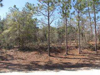 Land for sale in 00 ANDERSON Drive, Alford, FL, 32420