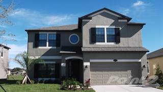 Residential Property for sale in 4 Alenza Lakes, Riverview, FL, 33579